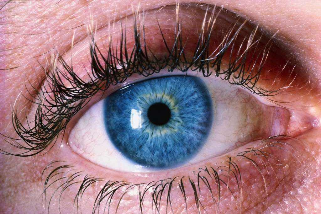 Causes Of Night Blindness and It's Treatment