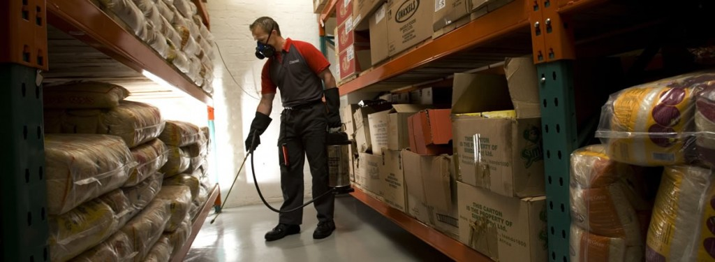Advantages Of Utilizing Services Of Pest Controllers Middlesex