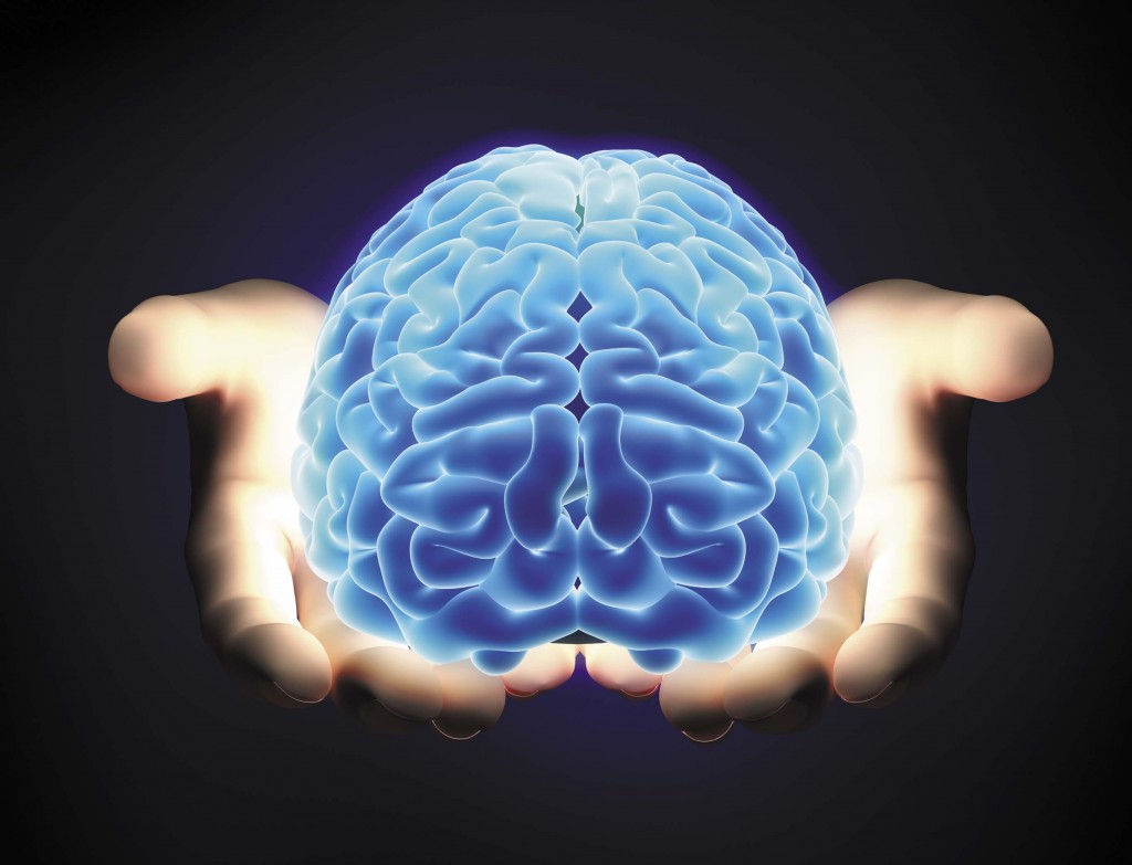 Nutrional Science: The Reason Behind Every Fit Brain and Mind