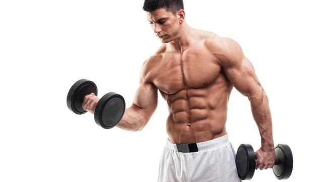 How To Get Tips For Muscle Building
