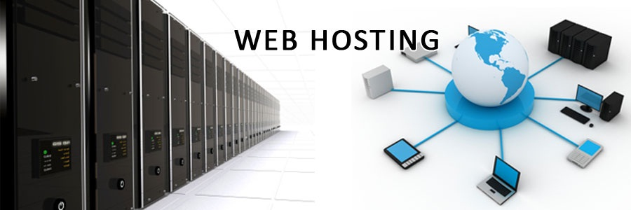 Hostoople Hostnine Review - How To Make Sure That You Choosing The Right Web Hosting Firm?