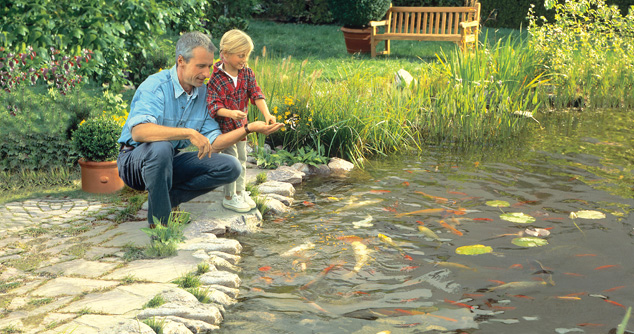 Take Proper Care Of Your Pond With Pond Vacuum