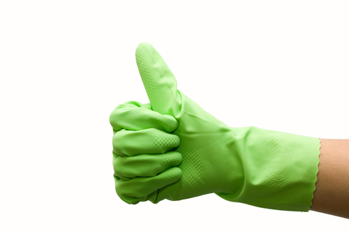 Top Tips To Clean Green!
